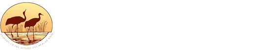 Friends of Bosque Del Apache Logo